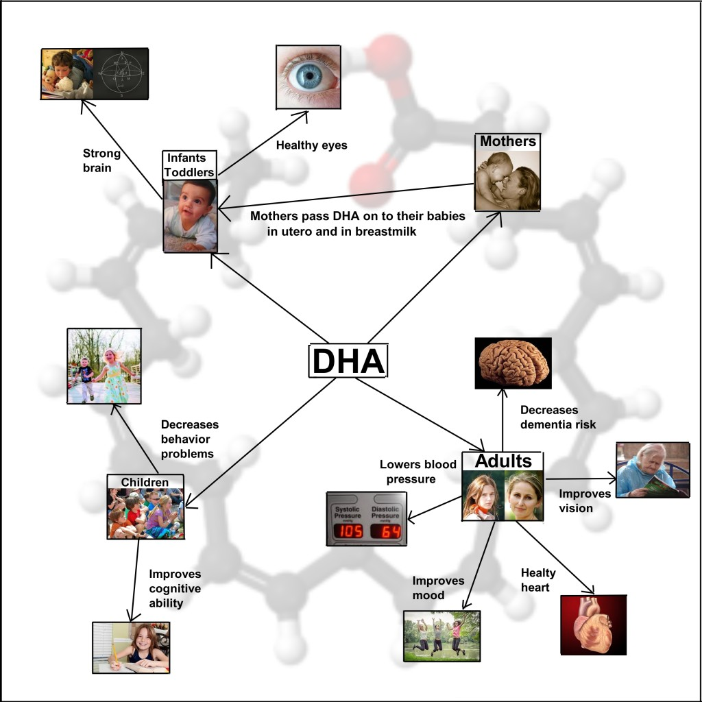 DHA_infographic_flat