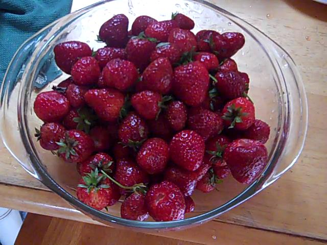 lotsastrawberries